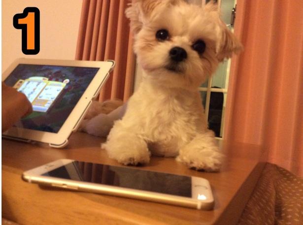 iPhone6Plusを買いました。